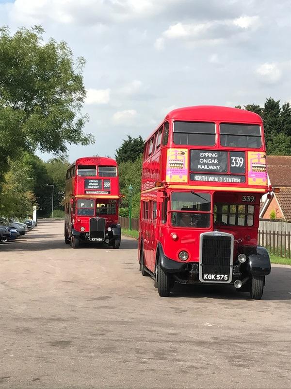 RT Buses