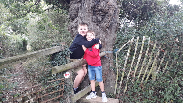 Children on stile